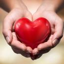 Сердце в ладошке Центр моя семья Кировhands-heart
