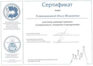 2016 02 Сертификат Устюжанина Созависимость