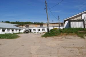 Суворовское ферма 2